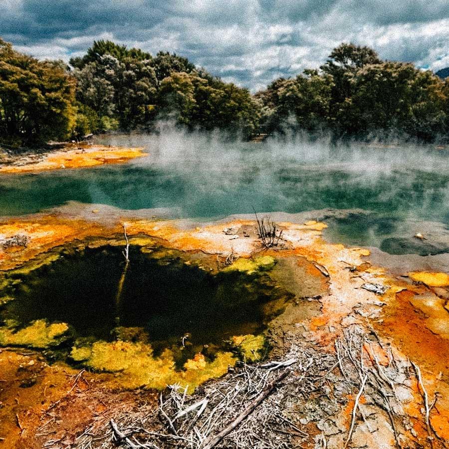 novazelandia